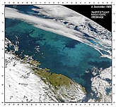 Barents Sea Bloom - selected image