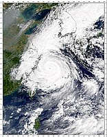 Typhoon Saomai - selected image