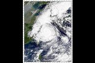 Typhoon Saomai
