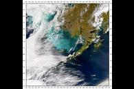 Bering Sea Bloom