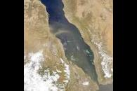 Red Sea Dust