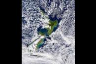 SeaWiFS: White Island Eruption Plume