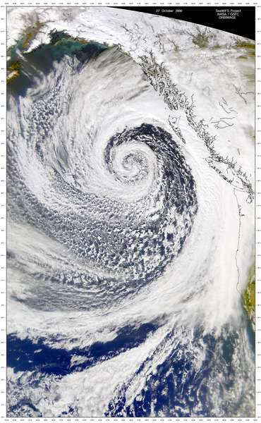 SeaWiFS: North Pacific Low - related image preview