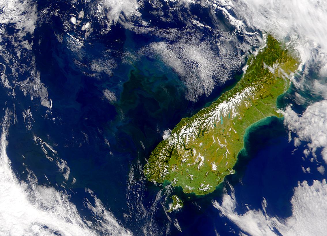SeaWiFS: Tasman Sea Bloom - related image preview