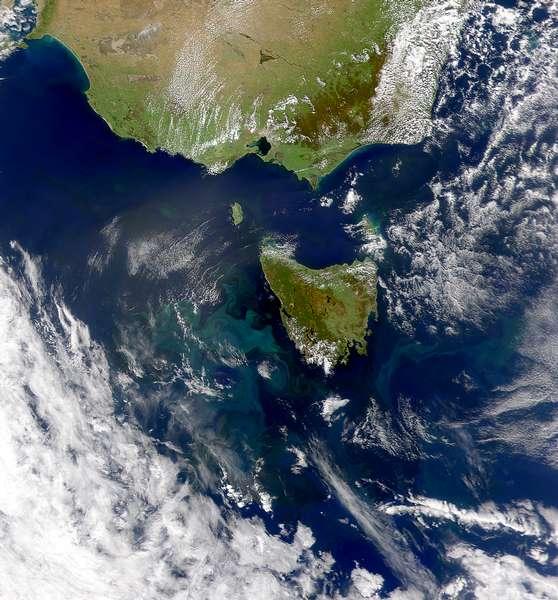 SeaWiFS: Tasmanian Eddy Field - related image preview