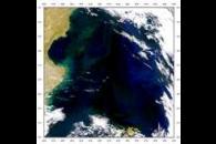 SeaWiFS: Black Hole in the Ocean