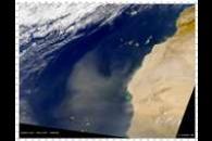 SeaWiFS: Northwest African Dust Storm
