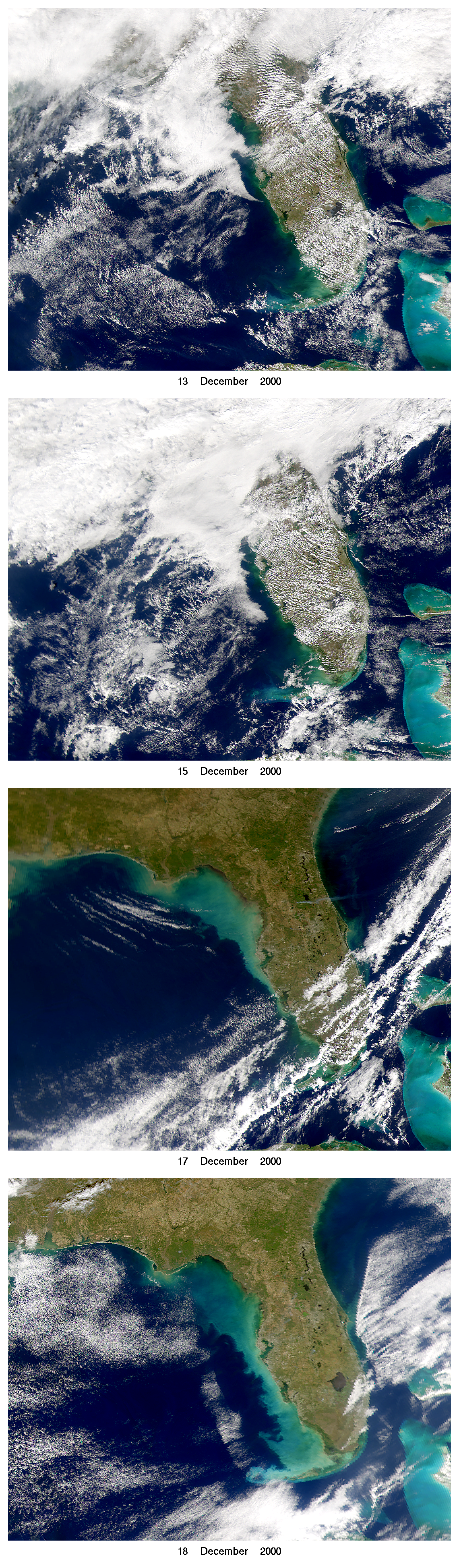SeaWiFS: West Florida Shelf Turbidity - related image preview