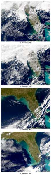 SeaWiFS: West Florida Shelf Turbidity - related image preview