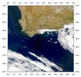 SeaWiFS: Blooms off South Africa - selected image