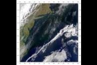 SeaWiFS: Gulf Stream Front