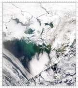 SeaWiFS: The Bering Sea - selected image
