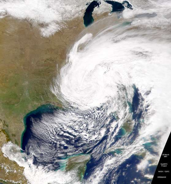 SeaWiFS: Eastern United States Low - related image preview