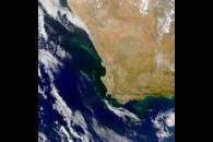 SeaWiFS: South African Upwelling