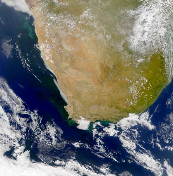 SeaWiFS:  Phytoplankton Blooms along the South African Coast - related image preview
