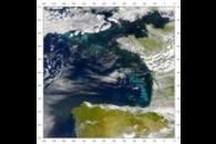 SeaWiFS: Phytoplankton Bloom in the Bay of Biscay