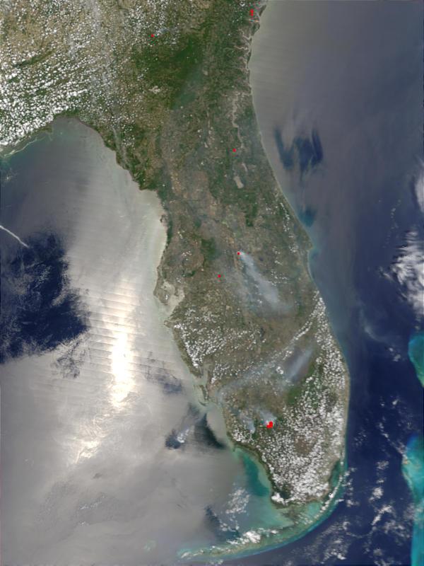 Florida Fires - related image preview