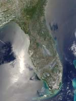 Florida Fires - selected image