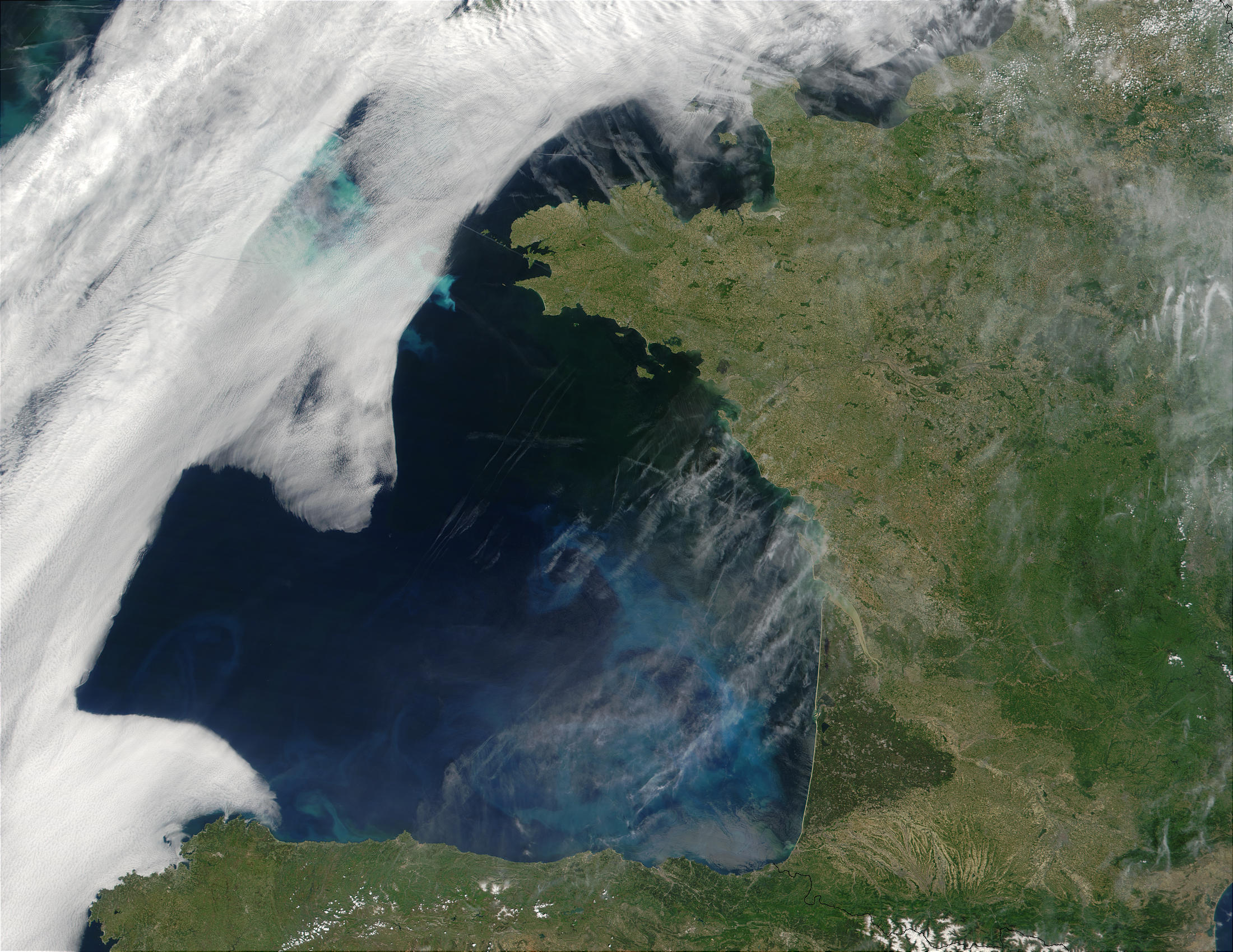 Phytoplankton bloom in the Bay of Biscay and off the coast of Brittany, France - related image preview