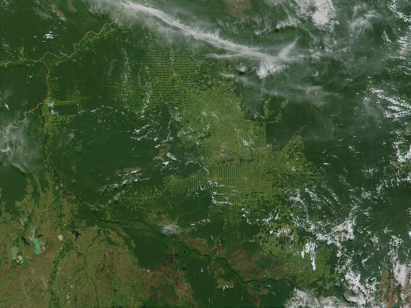Deforestation in Rondonia, Brazil - related image preview