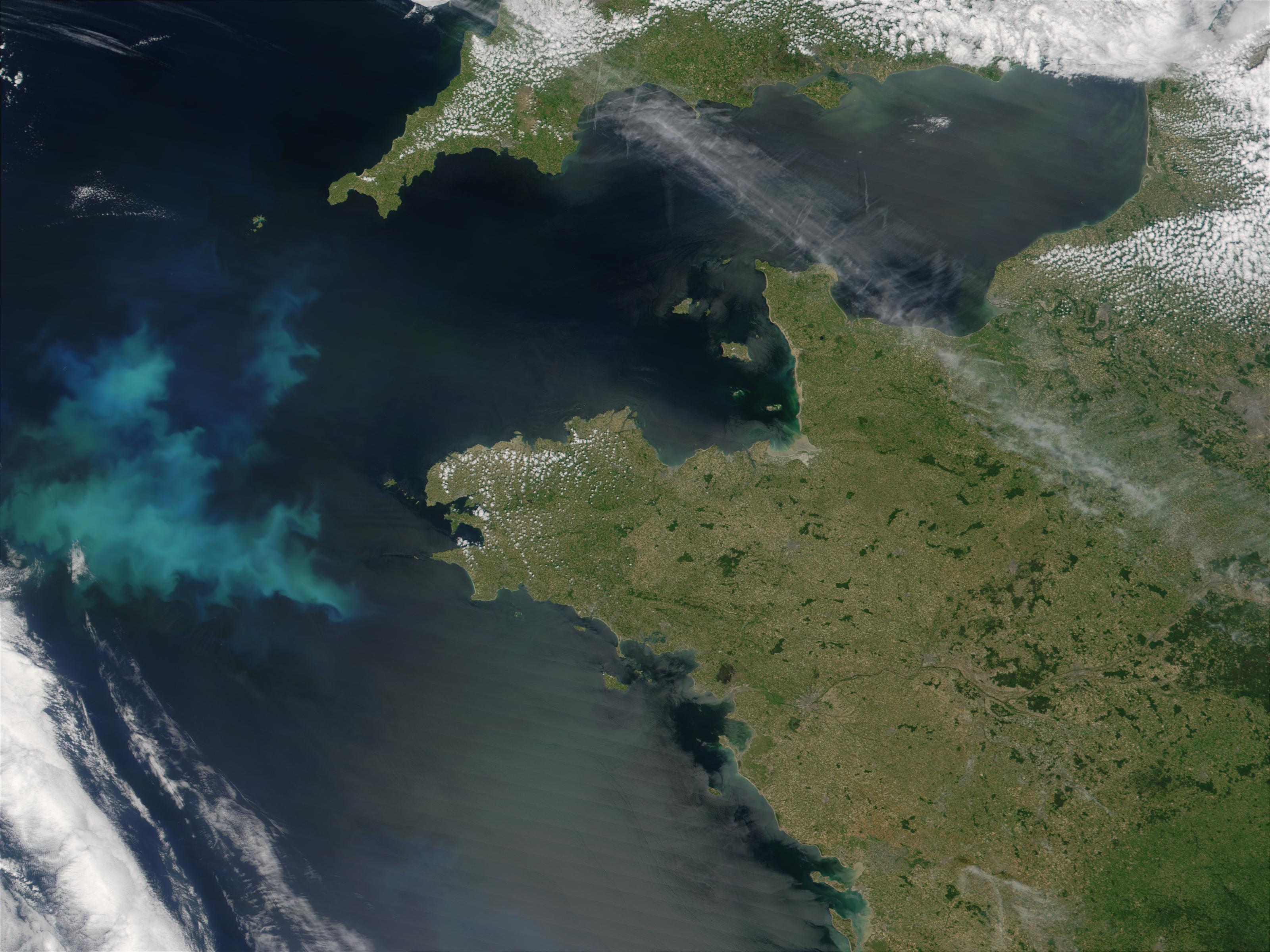 Phytoplankton bloom off the coast of Brittany, France - related image preview