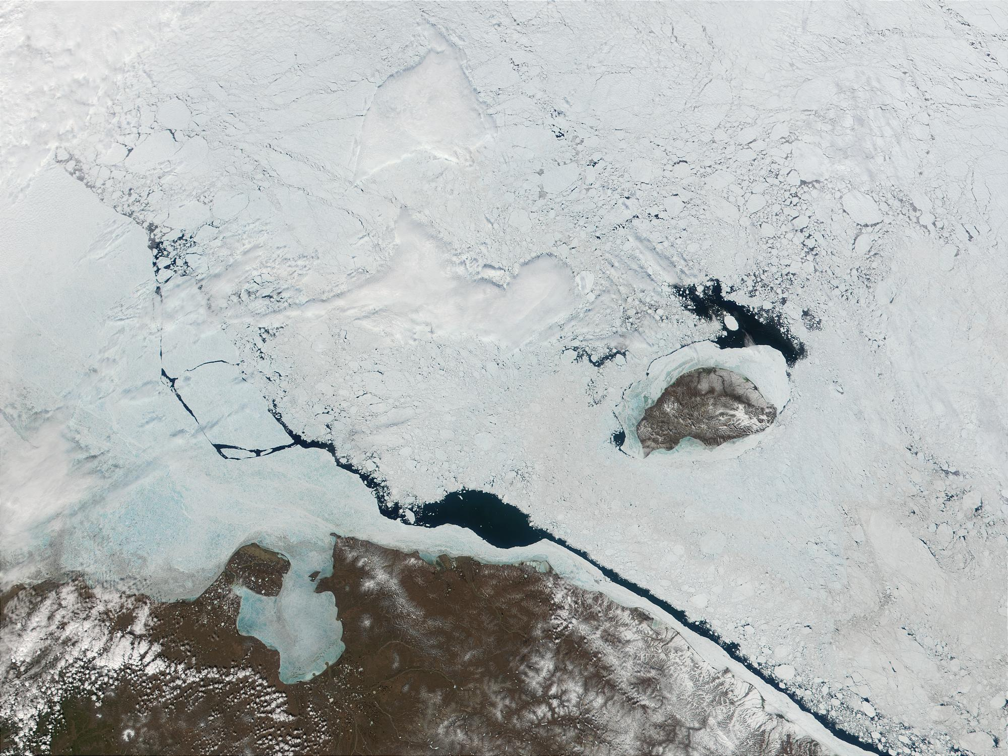 Wrangel Island, East Siberia, Russia - related image preview