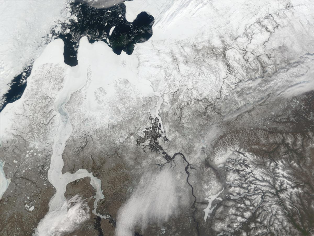 Mouth of the Yenisey River, Northern Russia - related image preview