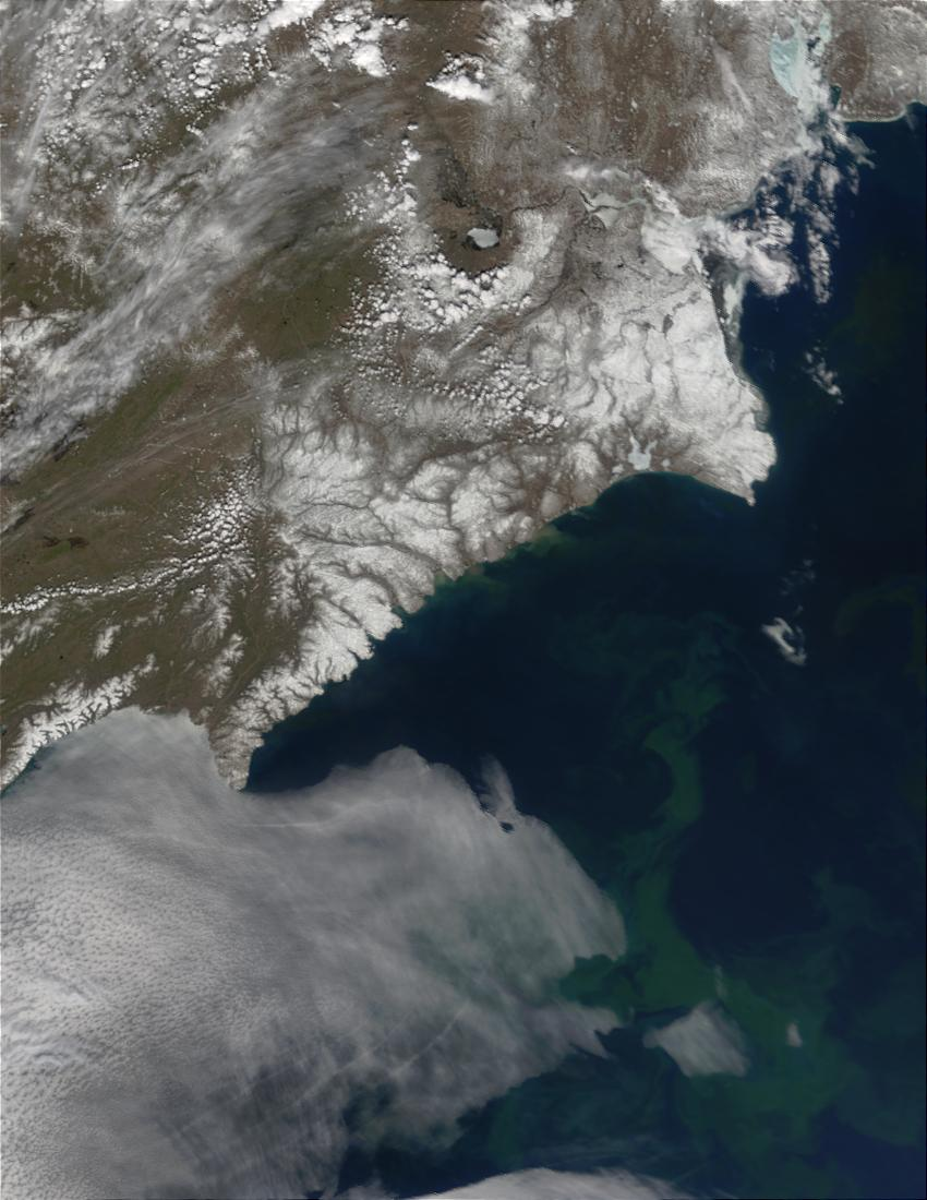 Phytoplankton bloom in Bering Sea, Russia - related image preview