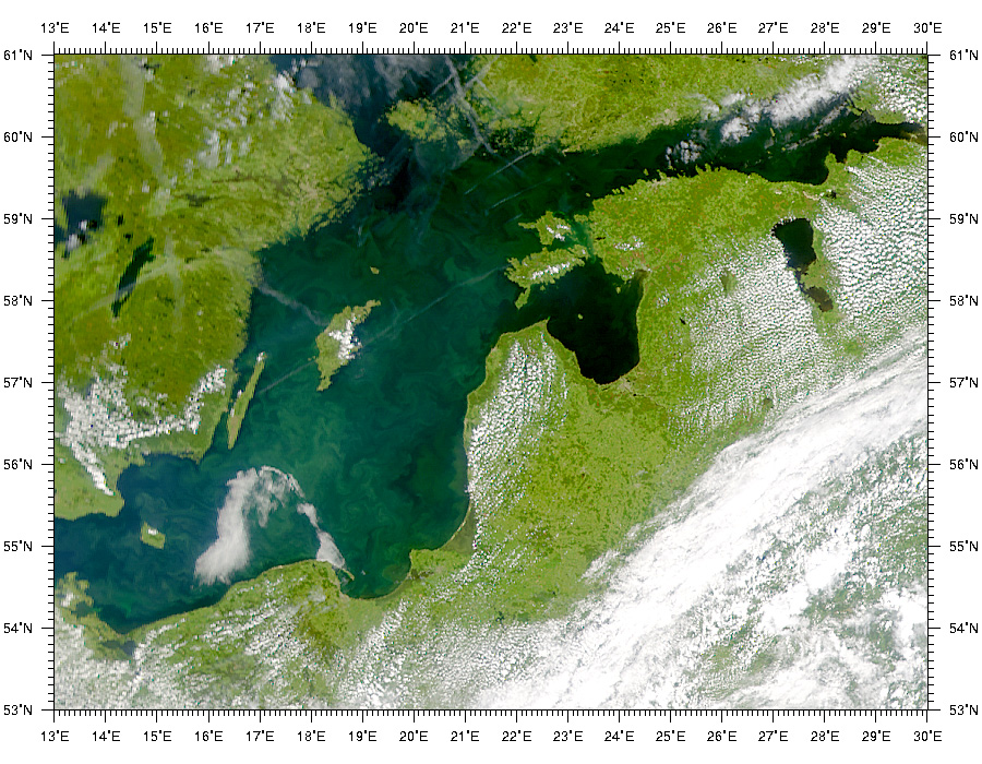 Phytoplankton bloom in the Baltic Sea - related image preview