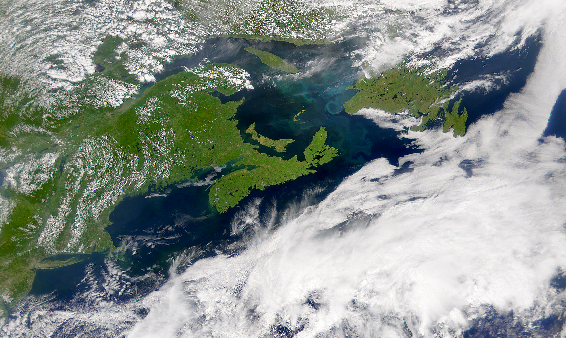SeaWiFS: Gulf of St. Lawrence Bloom - related image preview
