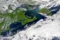 SeaWiFS: Gulf of St. Lawrence Bloom