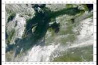 SeaWiFS: Baltic Sea Bloom