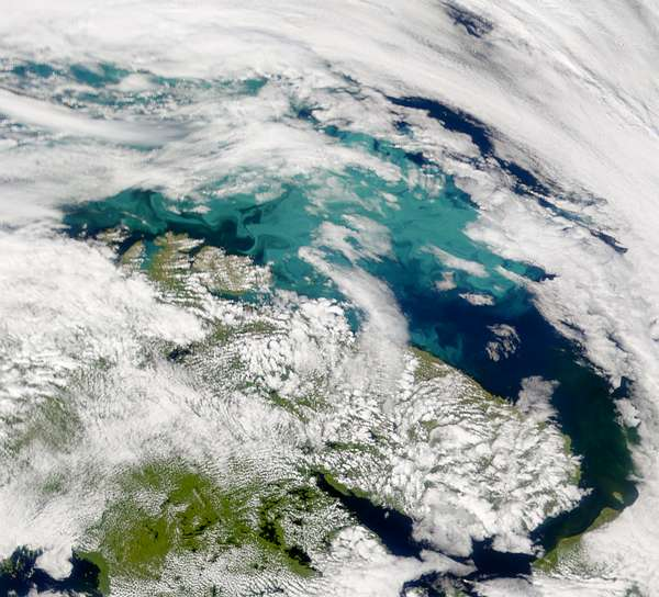 SeaWiFS: Bloom in the Barents Sea - related image preview