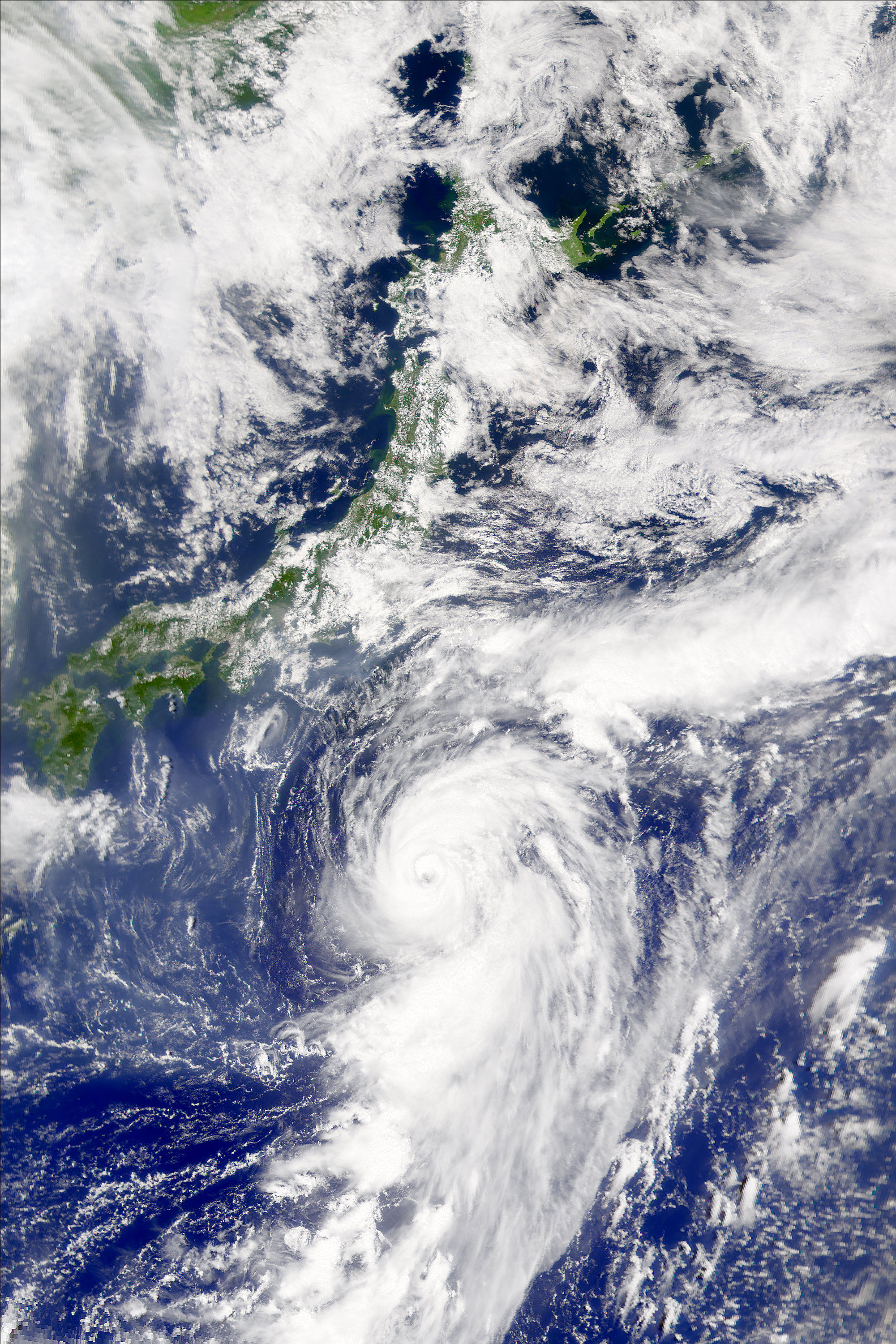 SeaWiFS: Typhoon Kong-Rey - related image preview