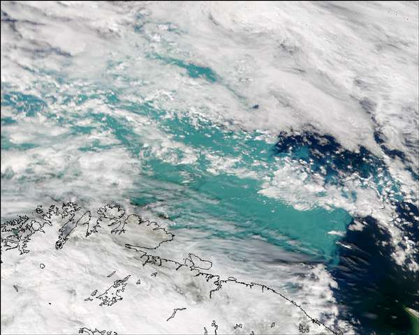 SeaWiFS: Phytoplankton Bloom in the Barents Sea - related image preview