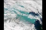 SeaWiFS: Phytoplankton Bloom in the Barents Sea
