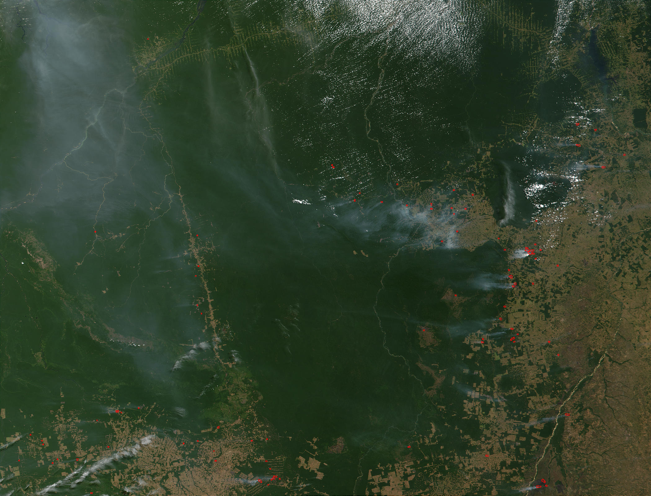 Fires and deforestation in Para state, Brazil - related image preview