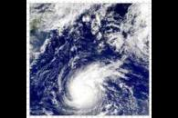 SeaWiFS: Super Typhoon Wutip