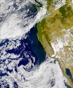 SeaWiFS: California Coastal Blooms - selected image