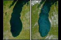 SeaWiFS: Lake Michigan Brightens Again