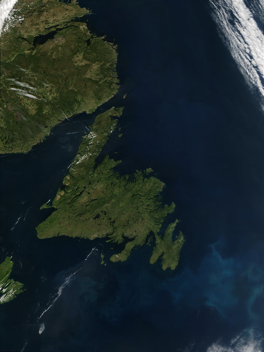 Phytoplankton bloom off the coast of Newfoundland, Canada - related image preview