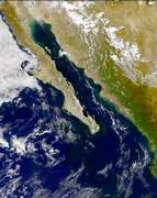 SeaWiFS: Phytoplankton Bloom in the Gulf of California - selected image