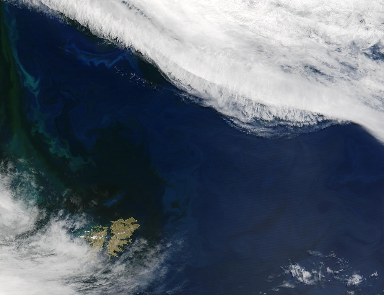 Phytoplankton bloom near Falkland Islands, South Atlantic Ocean - related image preview