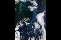Phytoplankton bloom near Falkland Islands, South Atlantic Ocean