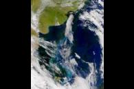SeaWiFS: Colorful South Atlantic