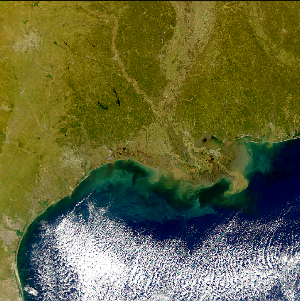 SeaWiFS: Gulf Coast Sediments - related image preview