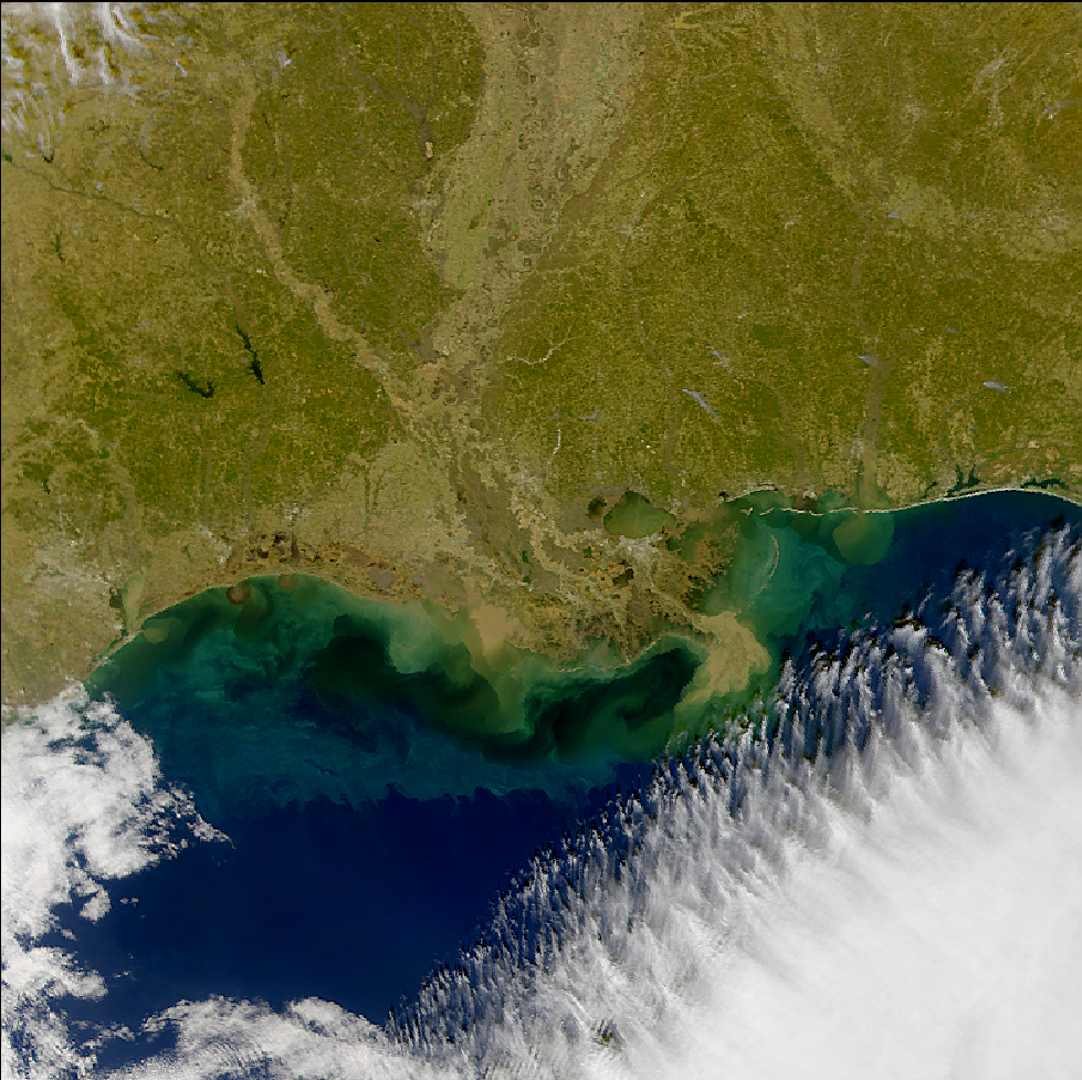 SeaWiFS: U.S. Gulf Coast Sediments - related image preview