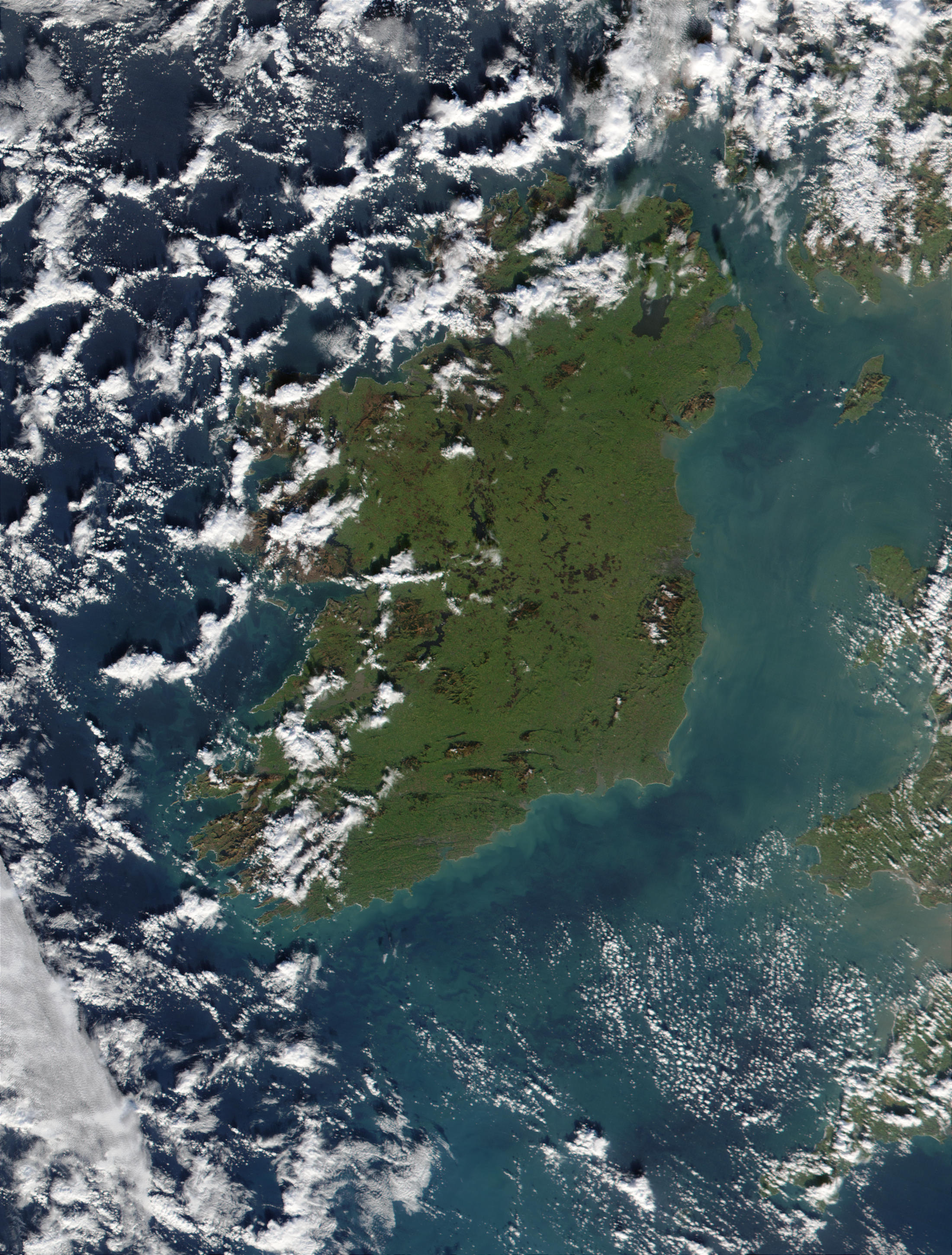 Phytoplankton bloom off the coast of Ireland - related image preview