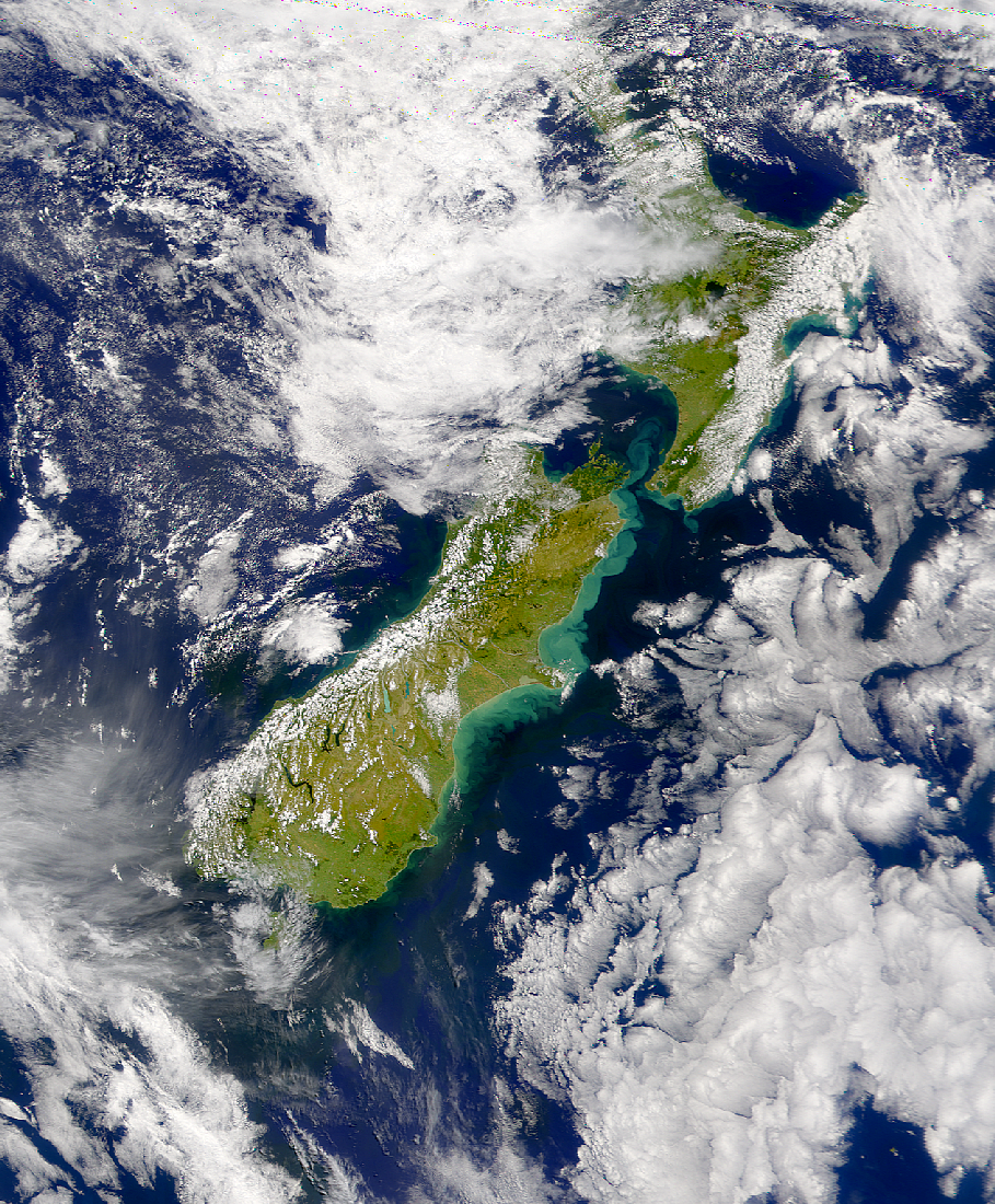 SeaWiFS: Turbidity east of New Zealand - related image preview