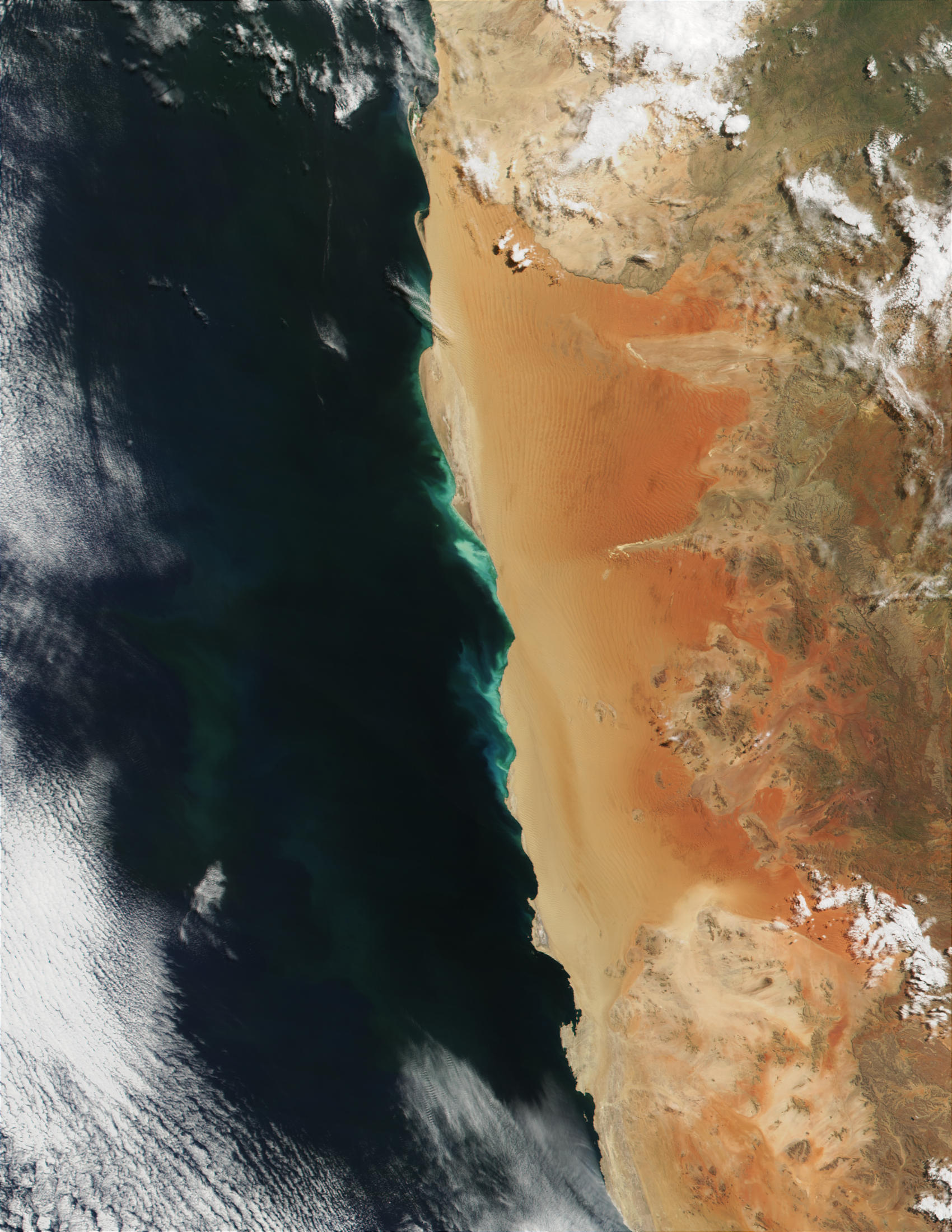 Phytoplankton bloom along the coast of Namibia - related image preview